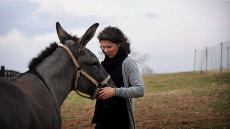 """Madonna Badger, whose three daughters and parents were killed in a Christmas day fire in her Shippan home in 2011, told Vogue magazine she will remarry in September. Here, she says hello to """"Moose,"""" a mule on P. Allen Smith's farm in Little Rock, Arkansas, on Sunday, December 2, 2012. Photo: Lindsay Niegelberg / Stamford Advocate"""