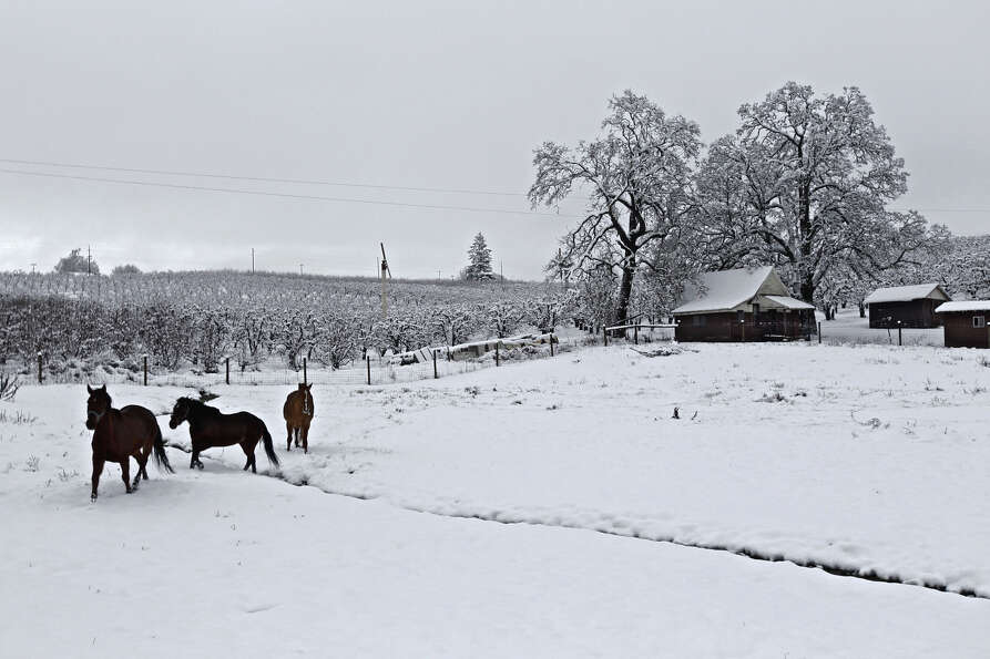 Snow blankets a farm south of Hood River, Ore.