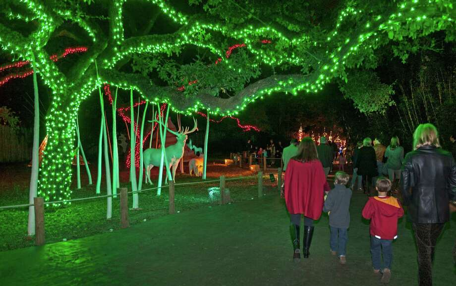 Lights will be on through Jan. 5 for the Zoo Lights holiday event. Photo: Craig Hartley, Freelance / Copyright: Craig H. Hartley