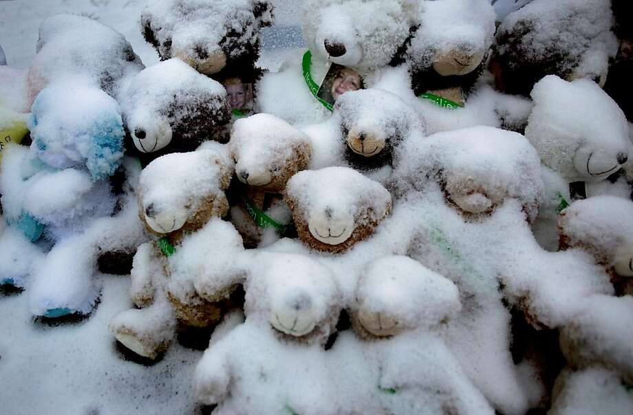 Snow-covered stuffed animals with victim's photos attached sit at a memorial in Newtown, Conn. Tuesday, Dec. 25, 2012. People continue to visit memorials after gunman Adam Lanza walked into Sandy Hook Elementary School in Newtown, Friday, Dec. 14, and opened fire, killing 26, including 20 children, before killing himself. Photo: Craig Ruttle, Associated Press
