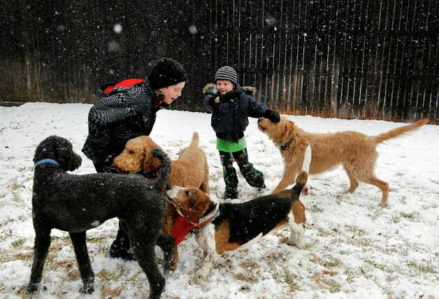 Walker Bowerman, 10, left, and Hughes Bowerman, 6, plays with family dogs in the snow in Arlington, Texas on Tuesday, Dec. 25, 2012. (AP Photo/The Dallas Morning News, David Woo) Photo: David Woo, MBR / The Dallas Morning News