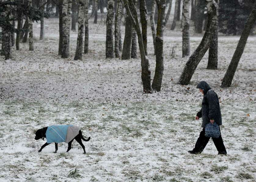 This pooch is dressed for the occasion -- a Dec. 5 walk in a snowy park in Minsk.