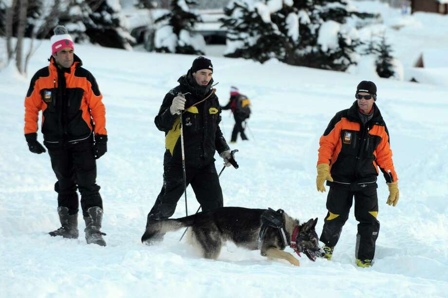 It isn't all play. This avalanche dog searches for people buried in the snow during a training session Dec. 11, near Les Deux Alpes ski resort in the French Alps. Photo: JEAN-PIERRE CLATOT, AFP/Getty Images / AFP