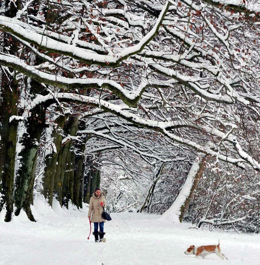 Oh what fun it is to romp in a picturesque setting near Zurich on Dec. 8. Photo: Walter Bieri, Associated Press / KEYSTONE
