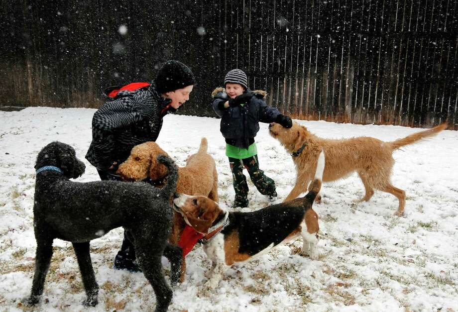 Walker Bowerman, 10, left, and Hughes Bowerman, 6, enjoy a North Texas white Christmas with their family dogs in Arlington on Tuesday. Photo: David Woo, Associated Press / The Dallas Morning News
