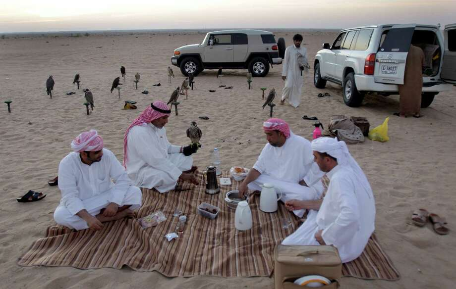 In this  Wednesday Nov. 14, 2012 photo, Iraqi professional falcon trainer Abu Badr al-Anazi, 2nd left, holds a falcon on his arm during a light breakfast before starting a training session in outskirt desert of Dubai, United Arab Emirates. While the methods to develop top-quality hunting falcons date back to antiquity, its transition into a modern Middle Eastern passion has brought in microchip tagging and price tags that can run well over $10,000 for a prime bird. Photo: Kamran Jebreili, AP / AP