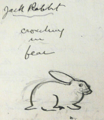 "This sketch by Seton shows a jackrabbit ""cowering in fear."" Photo: Anne W. Semmes"