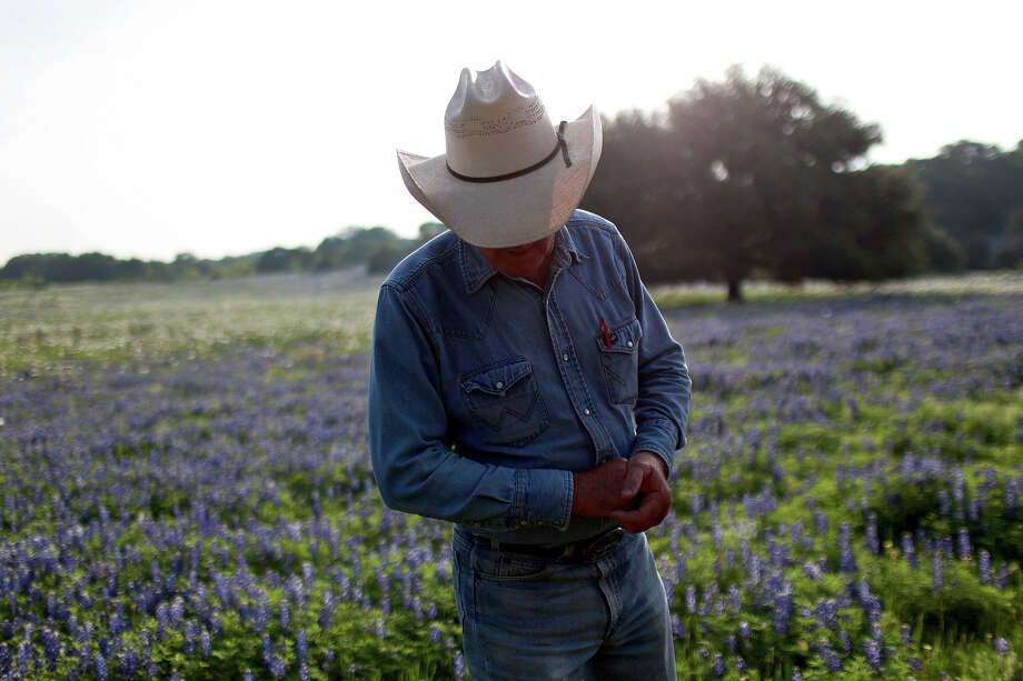 Ronnie Glaspie stands amid the sea of bluebonnets on his property on Willow City Loop on Friday, March 30, 2012. Photo: Lisa Krantz, San Antonio Express-News / SAN ANTONIO EXPRESS-NEWS