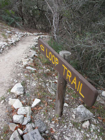 The Loop Trail at Old Tunnel State Park is well marked, with signs that help identify trees and birds along the way. (Terry Scott Bertling / San Antonio Express-News)