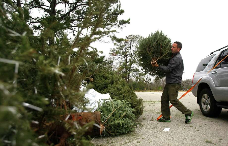 John Poole drops off his Christmas tree for recycling at one of the City of Houston Solid Waste Management Department's drop off sites in Memorial Park. Photo: Johnny Hanson, Houston Chronicle / © 2012  Houston Chronicle