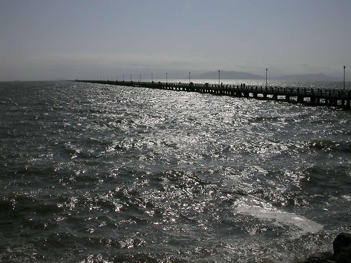 Berkeley Pier from Seawall Drive near Shorebird Park. Photo Tom Stienstra/The Chronicle