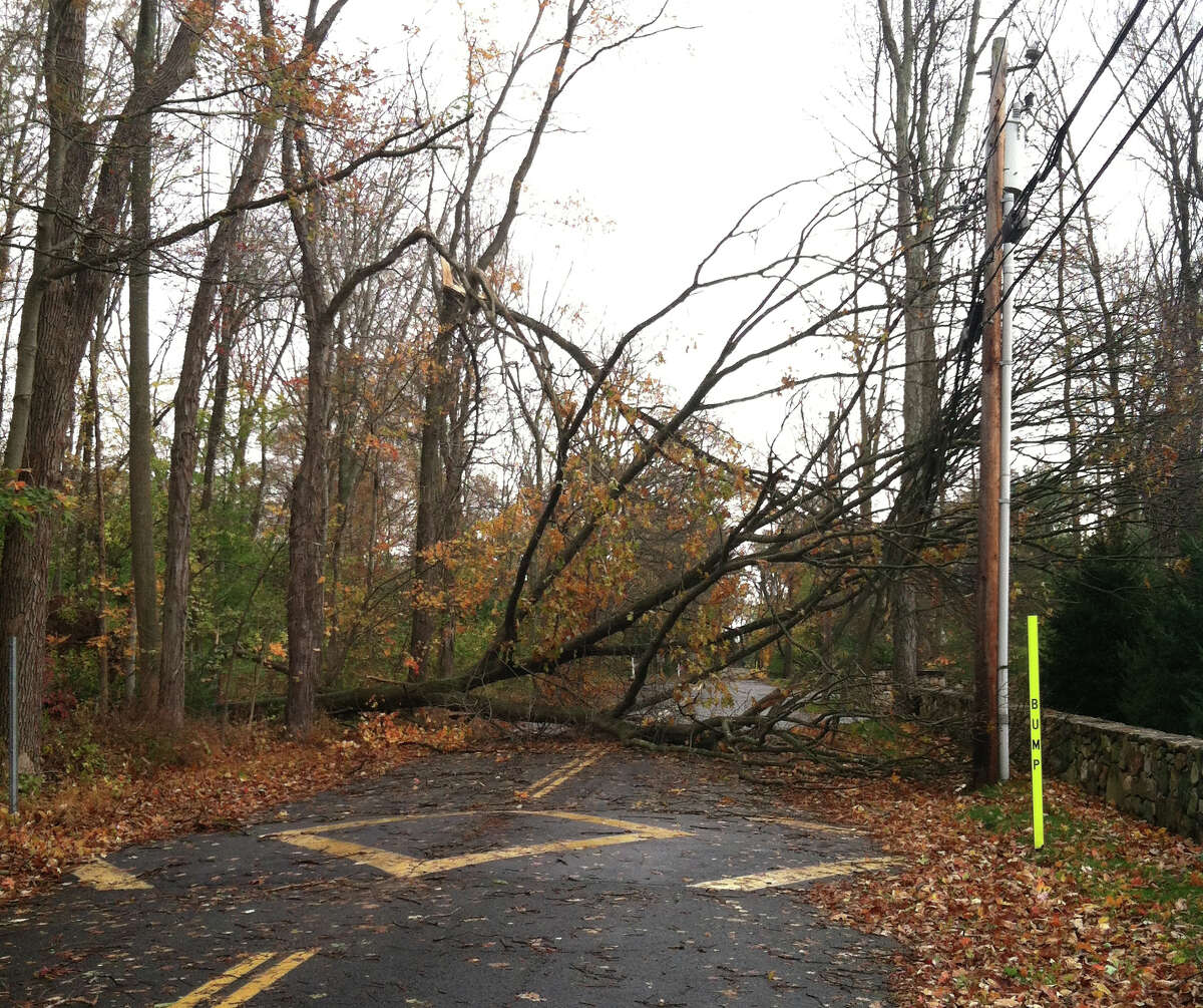 Stephen Mather Road in Darien, near Mansfield Avenue, is completely blocked by a fallen tree from the strong winds of Hurricane Sandy, which touched down on Oct. 22, 2012.