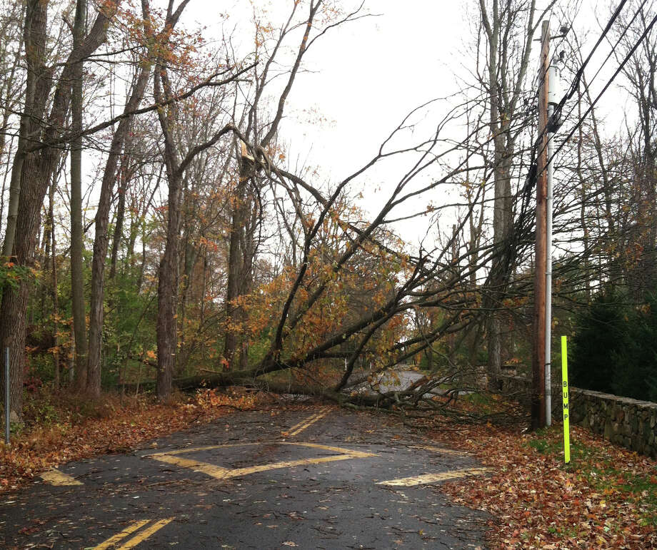 Stephen Mather Road in Darien, near Mansfield Avenue, is completely blocked by a fallen tree from the strong winds of Hurricane Sandy, which touched down on Oct. 22, 2012. Photo: Contributed