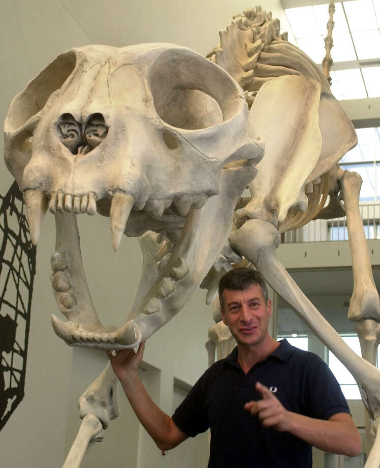 Italian sculptor Maurizio Cattelan stands by his forty-six foot long cat skeleton sculpture which was unveiled to the public at the Museum of Contemporary Art Wednesday, Oct. 10, 2001, in Chicago. Photo: FRED JEWELL, AP / AP