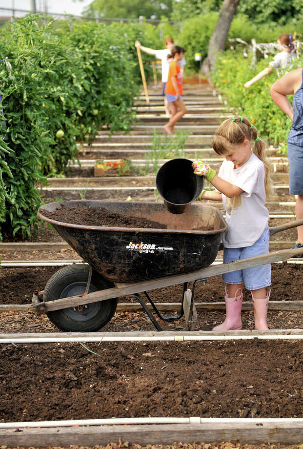 Adult volunteers are needed to help youngsters in the Children's Garden program at the San Antonio Botanical Garden. It's one way to pass along knowledge and passion for gardening. Photo: Express-News File Photo / SAN ANTONIO EXPRESS-NEWS