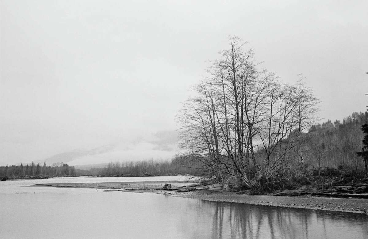"""San Antonio native Charles J. Katz Jr. shot haunting black-and-white images in Washington state's Skagit River valley for the new book """"The Power of Trees"""" from Trinity University Press."""