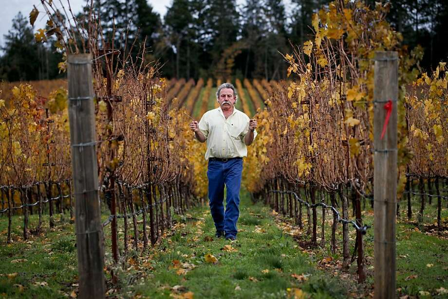 Marc Mondavi is part of California's wine aristocracy - and he swears by his ability to find water using divining rods. Photo: Russell Yip, The Chronicle