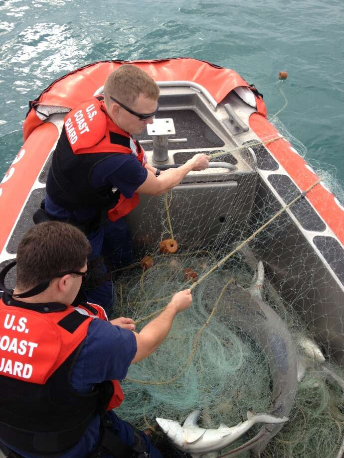 Sunday's arrests were hardly new.
