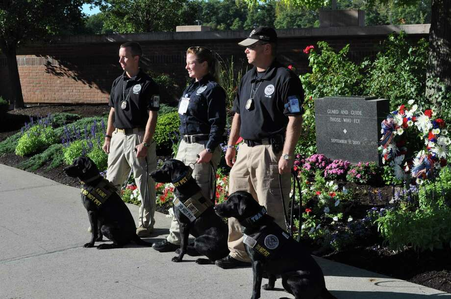 Three Labrador retrievers are shown with their handlers at Albany International Airport during a Sept. 11 memorial service that honored the victims of those terrorist attacks.