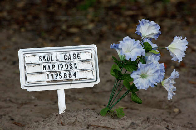 "Flowers are seen by ""John Doe"" burial sites at Brooks County's cemetery in Falfurrias. So far this year, 127 bodies have been found in the county. Photo: Jerry Lara, San Antonio Express-News / © 2012 San Antonio Express-News"