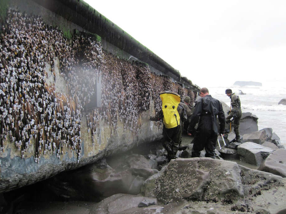 In this Dec. 21 file photo provided by the Washington Dept. of Fish & Wildlife, scientists and others inspect a dock that floated up on a remote stretch of wilderness beach in northwestern Washington. A scientist who examined the dock said this week that it looks just like the one that came ashore on a central Oregon beach last summer, suggesting it also is a piece of tsunami debris from Japan. Photo: AP