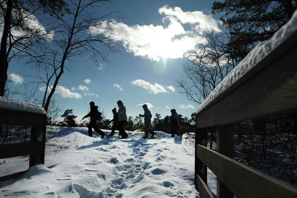 Enjoy the Pine Bush at night with an hourlong hike under the almost full moon. 6:30 p.m. Friday, Albany Pine Bush Discovery Center. Click here for more information. (Paul Buckowski / Times Union)