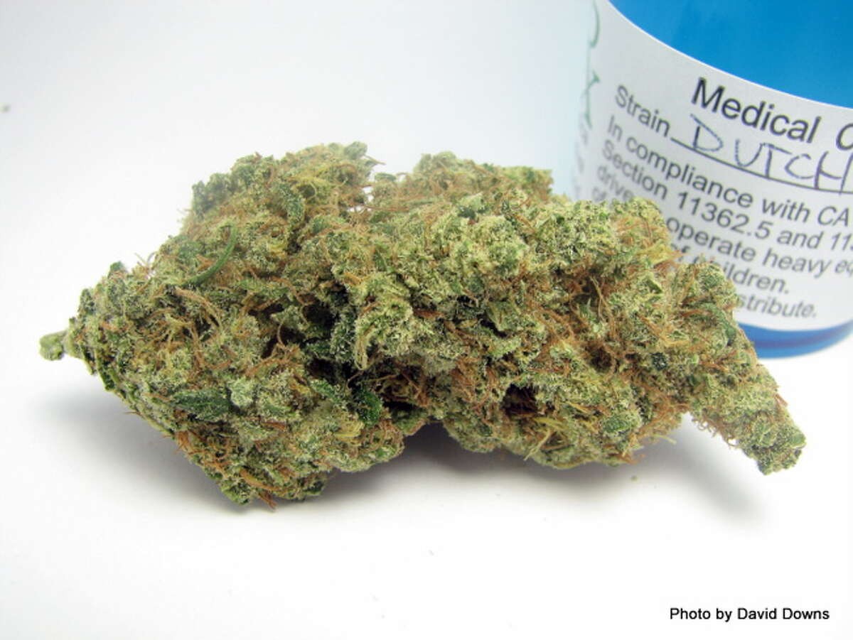 9) DUTCH TREAT A more mellow off-shoot of Jack Herer - Dutch Treat took second place in the Patients' Choice San Francisco competition this Fall. (David Downs / David Downs)