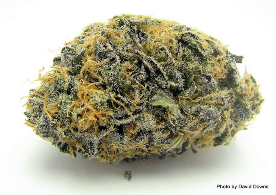 7) PURPLE BLUEBERRYCombining two beloved flavor profiles - Blueberry and Purps - Purple Blueberry satisfied patients' sweet tooth in 2012. (David Downs / David Downs) Photo: Picasa