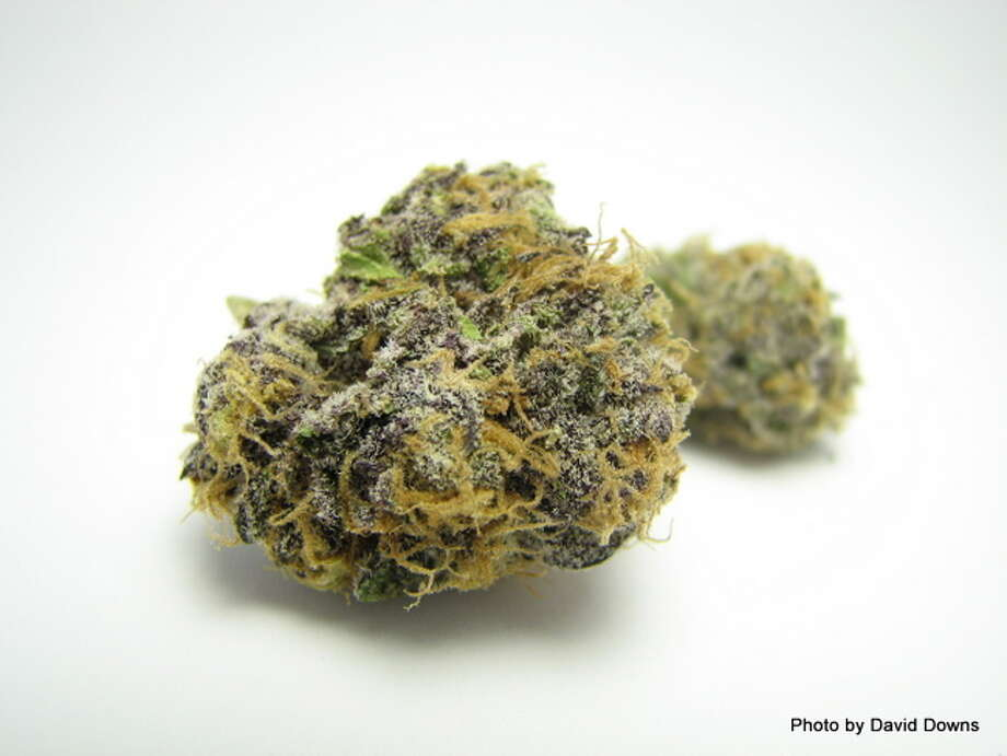 2) GRAND DADDY PURPLENorthern California wants everything purple, so much so that green weed is falling out of fashion in some circles. Granddaddy Purple - or GDP for short - is a must-have on dispensary shelves. (David Downs / David Downs) Photo: Picasa