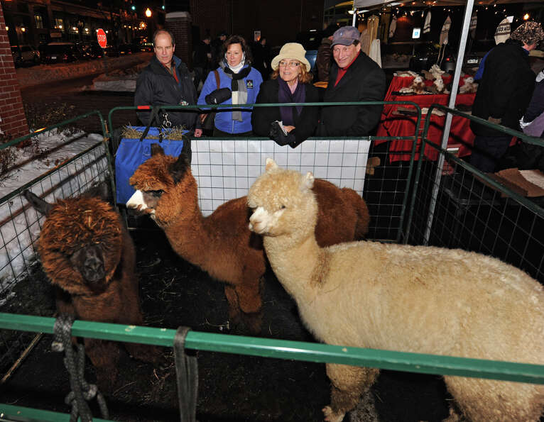 People take a look at three Alpacas from Breezy Hill Ranch during First Night Saratoga on Monday Dec