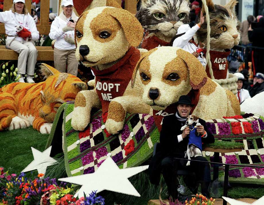 """Larger-than-life dogs and cats with real humans and pets are seen aboard the Beverly Hills Pet Care Foundation float, """"Follow the Stars - Adopt a Pet,"""" the winner of the Lathrop K. Leishman trophy for the most beautiful entry from a non-commercial sponsor, in the 124th Rose Parade in Pasadena, Calif., Tuesday, Jan. 1, 2013.  (AP Photo/Reed Saxon) Photo: Reed Saxon, Associated Press / AP"""