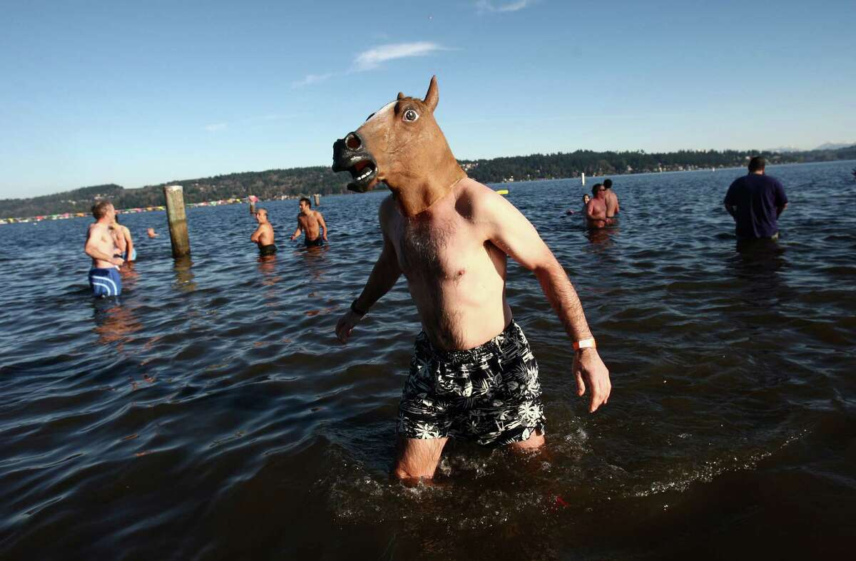 A man wearing a horse mask wades in Lake Washington during the 11th annual Polar Bear Plunge at Matthews Beach.