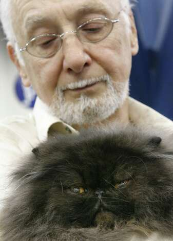 "Gene Boul of Baytown holds ""Cody Bear"", a male black Persian CPC cat at the Houston Cat Club's 56th Annual Charity Cat Show in 2008.  Photo: Steve Campbell, Houston Chronicle / Houston Chronicle"