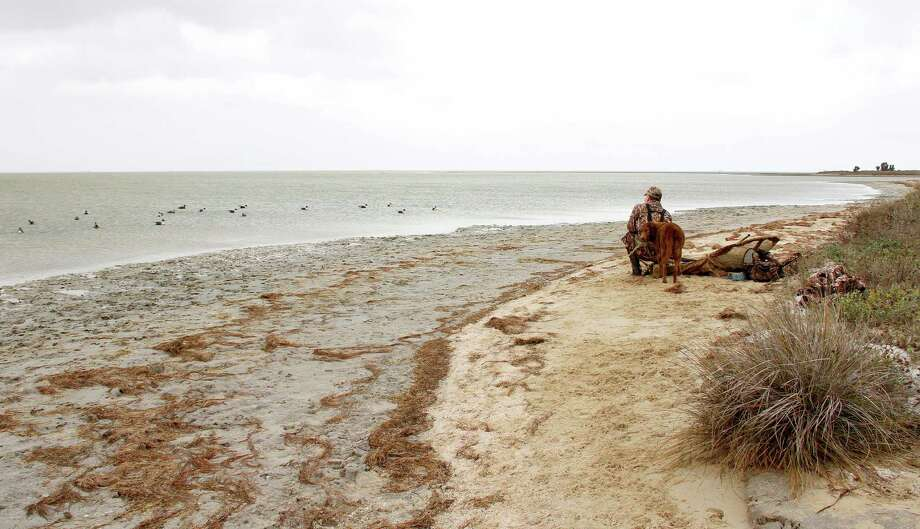 Waterfowler Rob Sawyer and Chesapeake Bay retriever Nellie enjoy the final moments of a December morning hunt on desolate Baffin Bay that saw scores of ducks, including dozens of drake pintails, sail into the decoys. Photo: Picasa