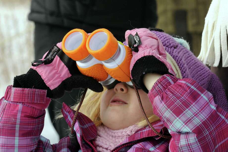 Four-year-old Abbey Salls of Clifton Park takes part in the third annual KIDS Holiday Bird Count at the Albany Pine Bush Discovery Center in Albany, N.Y. Saturday Jan. 5, 2013. (Michael P. Farrell/Times Union) Photo: Michael P. Farrell