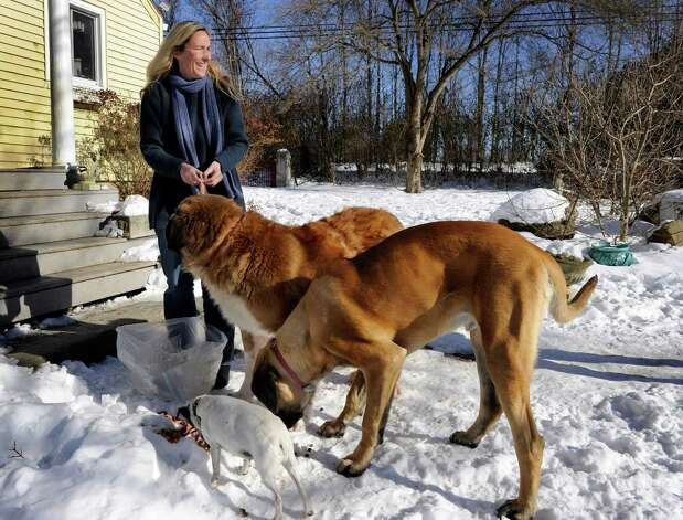 Scarlett Lewis, of Sandy Hook, feeds her dogs at her Newtown home, Thursday, January 3, 2012. Her son Jesse died in the Sandy Hook Elementary School shootings in December. Photo: Carol Kaliff
