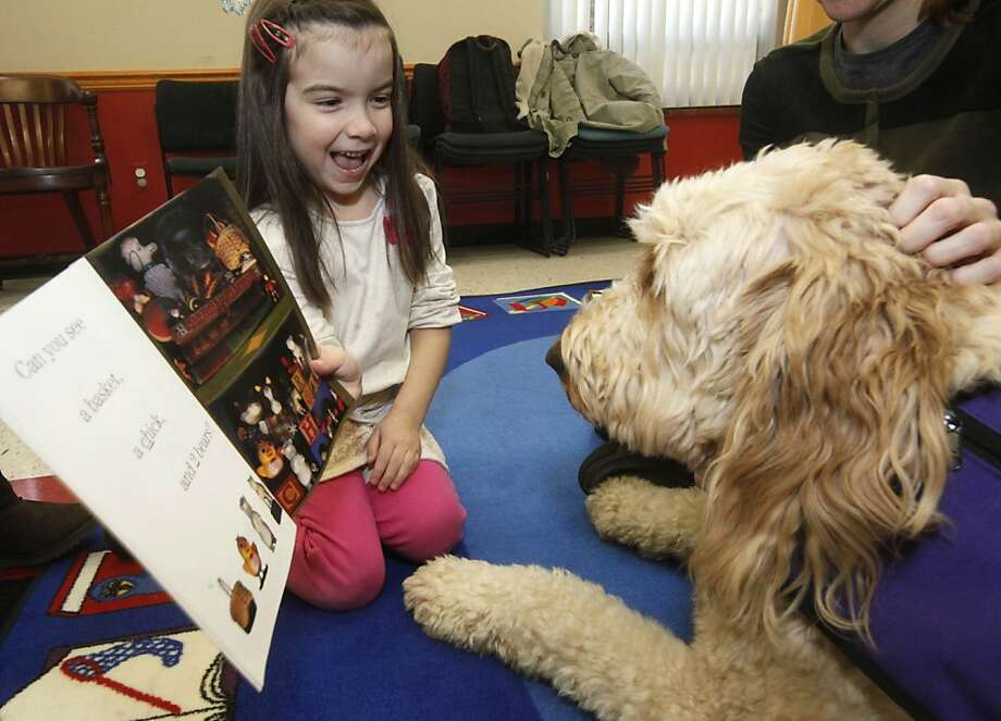 Ava Roslund, 5, of White Township, reads to Barley Barker, a 3-year-old Golden-doodle therapy dog, Saturday morning, Jan. 5, 2013 at the Catherine Dickson Hofman Branch of the Warren County Library in Blairstown, N.J. Photo: Stephen Flood, Associated Press