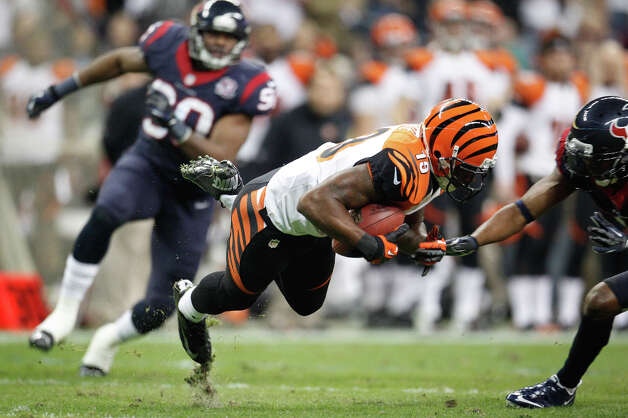 Bengals wide receiver Brandon Tate (19) recovers his own punt return fumble during the third quarter. Photo: Karen Warren, Houston Chronicle / © 2012 Houston Chronicle