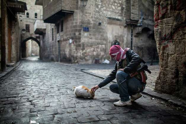 A Free Syrian Army fighter feeds a cat bread in the old city of Aleppo, Syria, on Sunday. The revolution against Syrian President Bashar Assad that began in March 2011, started with peaceful protests but morphed into a civil war that has killed more than 60,000 people, according to a recent United Nations recent estimate. Photo: AP