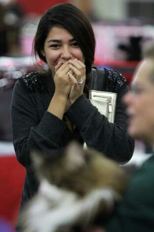 Mariah Leal of Manvel reacts to seeing a Maine Coon cat for the first time during the Houston Cat Club 60th Annual Charity Cat Show at the George R. Brown Convention Center Sunday, Jan. 6, 2013, in Houston. The cat named Walker is held by Jody Chambers of Ft. Worth weighs 22 pounds.  After seeing the cat, Mariah said she wants one. Photo: Melissa Phillip, Houston Chronicle / © 2012 Houston Chronicle