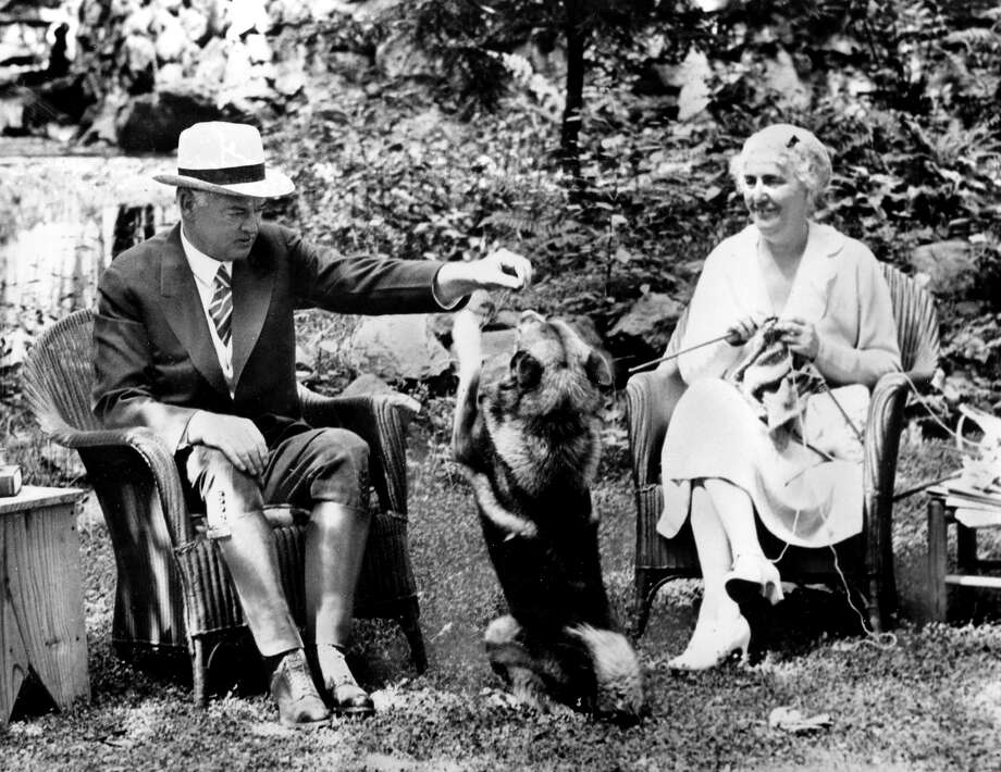 President Herbert C. Hoover and first lady Lou Henry Hoover enjoy their vacation with their Norwegian elkhound, Weeji, at Rapidan Camp, Va., in August 1932. Photo: Associated Press / Associated Press