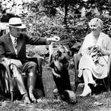 President Herbert C. Hoover and first lady Lou Henry Hoover enjoy their vacation with their Norwegian elkhound, Weeji, at Rapidan Camp, Va., in August 1932.