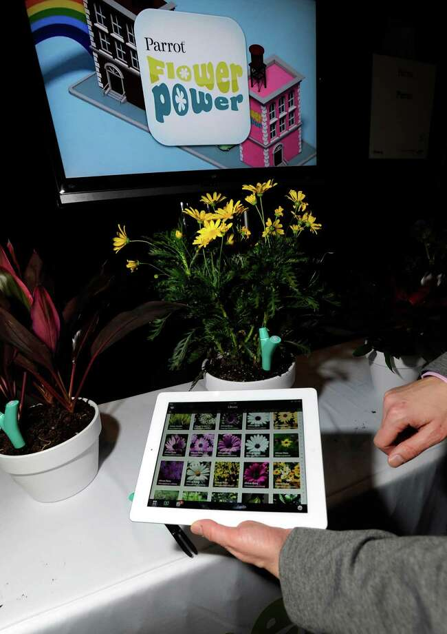 Parrot's Flower Power plant monitor and application is on display Sunday. The monitor will sense the plant's enviroment and relay the information to the user's smart phone or tablet. Photo: David Becker, Getty Images / 2013 Getty Images