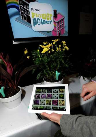 Parrot's Flower Power plant monitor and application is on display during a press event at the Mandalay Bay Convention Center for the 2013 International CES on January 6, 2013 in Las Vegas, Nevada. The monitor will sense the plant's enviroment and relay the information to the user's smart phone or tablet. CES, the world's largest annual consumer technology trade show, runs from January 8-11 and is expected to feature 3,100 exhibitors showing off their latest products and services to about 150,000 attendees. Photo: David Becker, Getty Images / 2013 Getty Images
