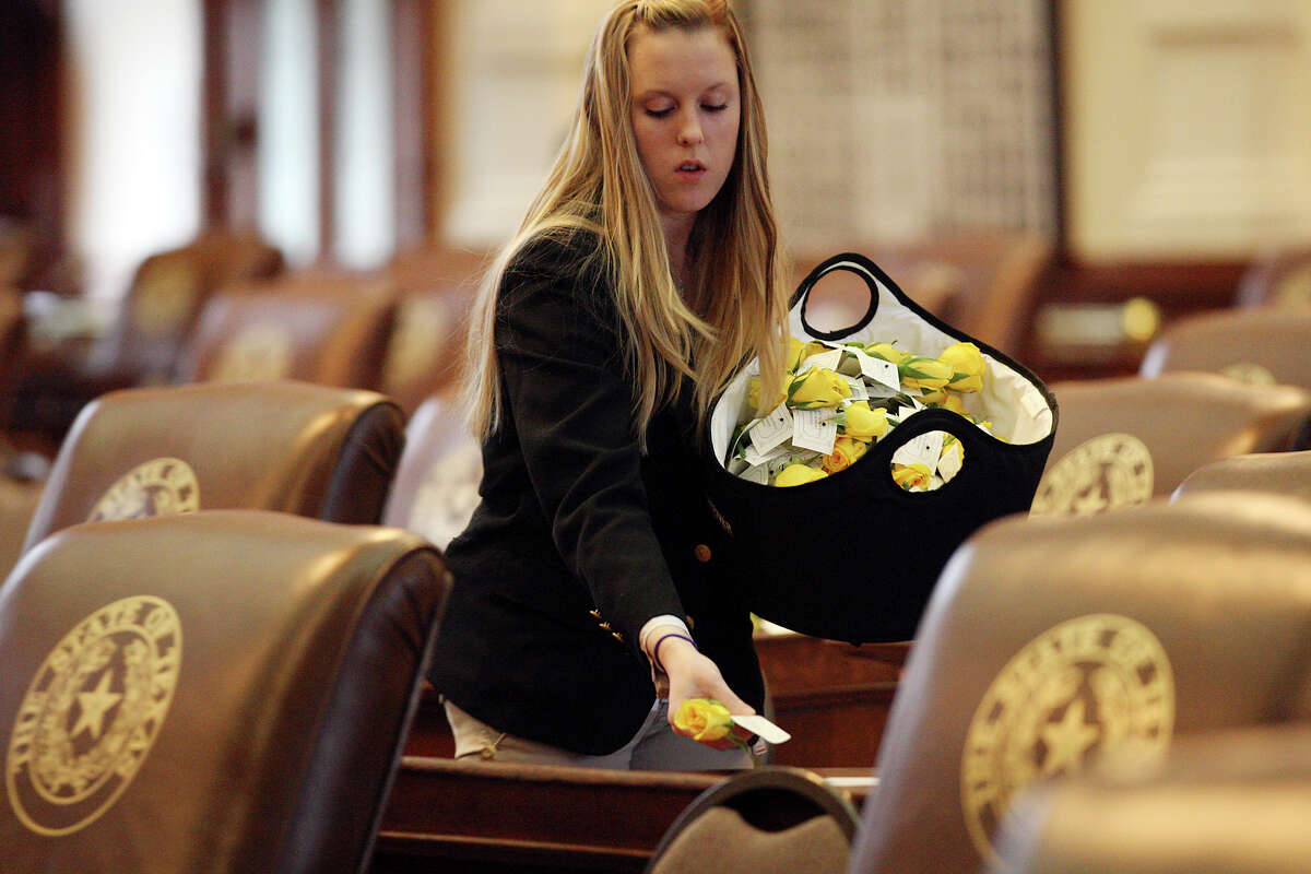 Kimberly Nemecek, with the Texas House of Representatives Sergeant-at-Arms office, places yellow roses on top the representatives desk before the start the 83rd Texas Legislature at the State Capitol in Austin, Tuesday, Jan. 8, 2013. The roses were courtesy of St. Rep. Dist. 77 Marisa Marquez.