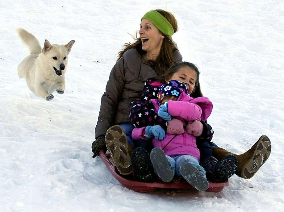 Forget something? Tucker the Pomeranian-Corgi mix chases Chrissy Bedrossian, her granddaughter, Madison, 3, and neighbor Angely Camilo, 7, sledding down a slope at Center Park in Manchester, Conn. Photo: Jim Michaud, Associated Press