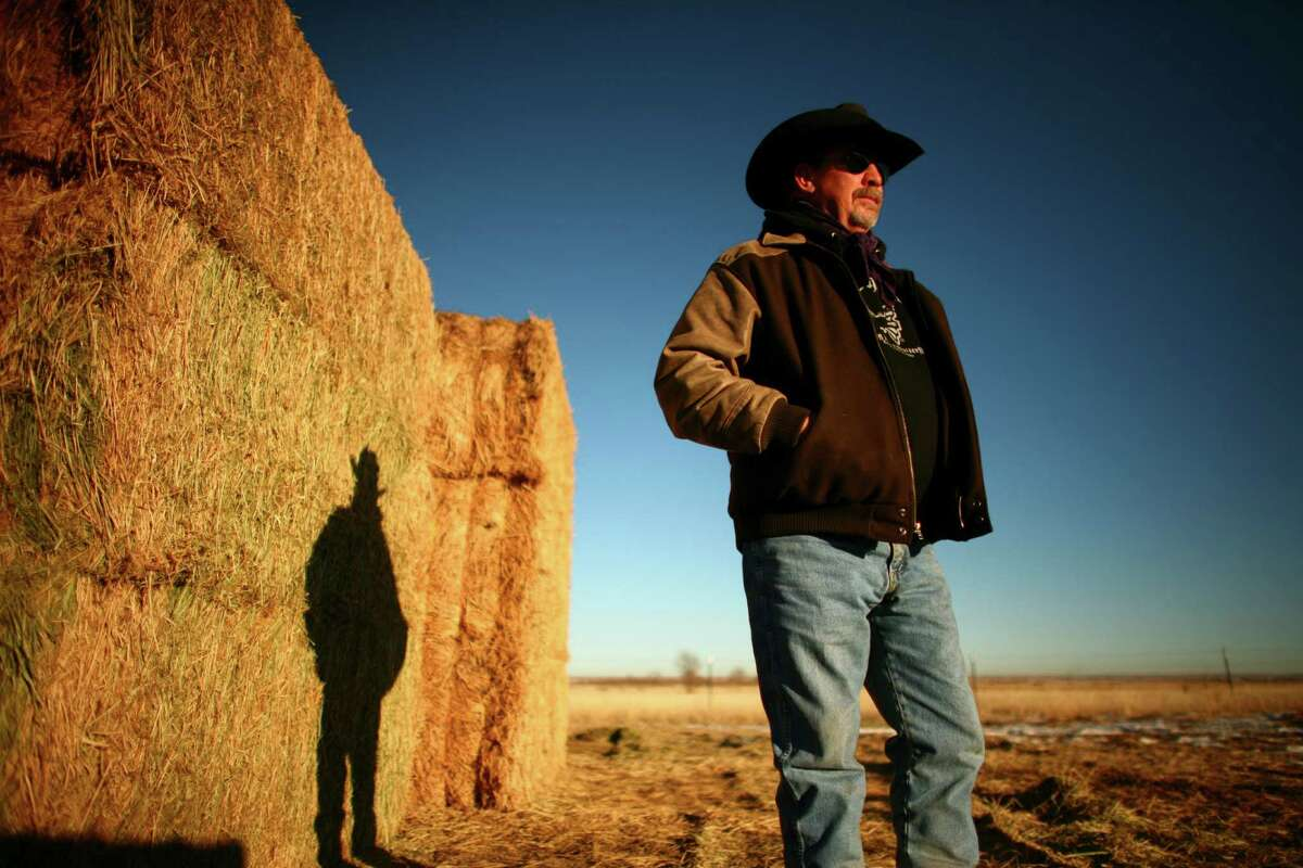 Drought and grass fires have pushed the price of hay to near records, making it an increasingly irresistible target for thieves and casting a shadow on Conrad Swanson's ranching operation in Wellington, Colo. One culprit hot-wired a front-end loader and stole enough of Swanson's alfalfa hay to fill a semi's flatbed.