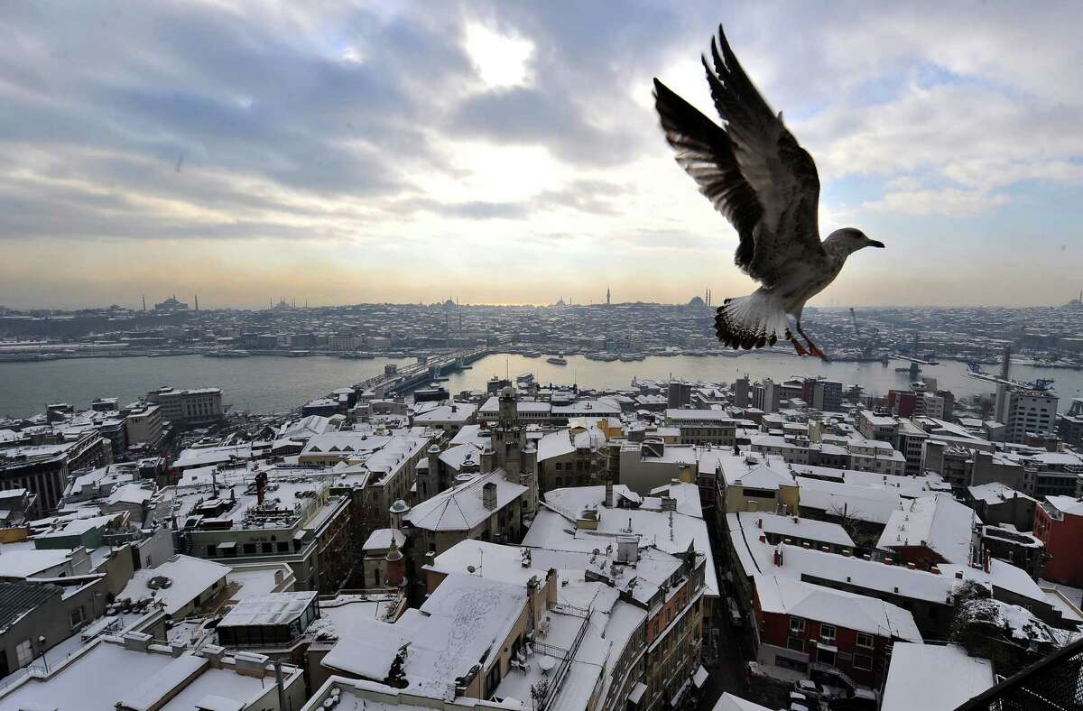 A picture taken from Galata Tower shows a seagull flying over the snow-covered old city of Istanbul on January 9, 2013.