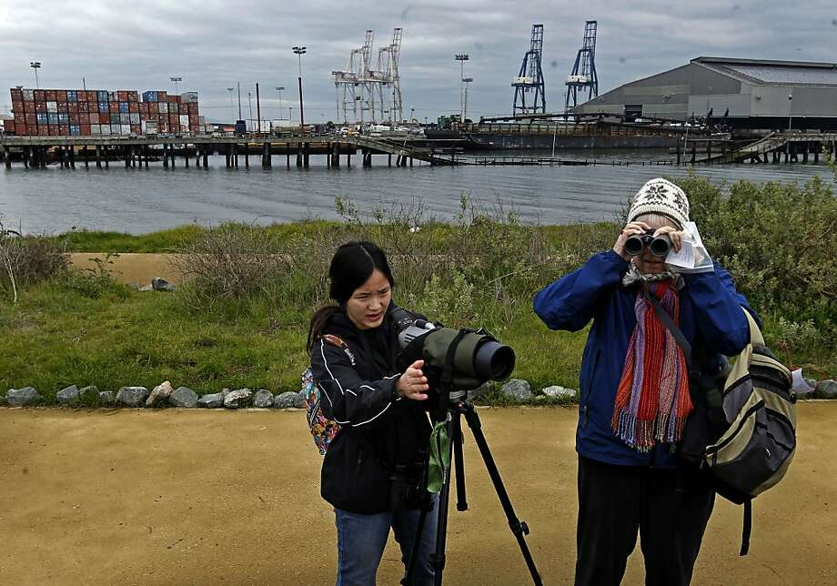 Student Mina Ching and Nancy DeStefanis of S.F. Nature Education search for birds at Heron's Head Park. Photo: Michael Macor, The Chronicle