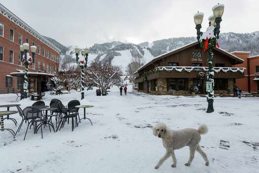 A dog strolls through downtown Aspen, Sunday, Dec. 9, 2012, in Aspen. ( Michael Paulsen / Houston Chronicle ) Photo: Michael Paulsen, Staff / © 2012 Houston Chronicle